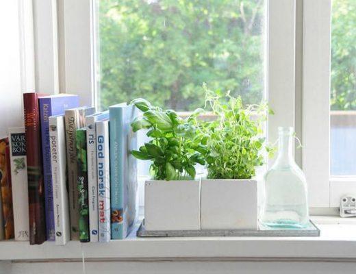Ideas para decorar tu cocina Evoque con plantas aromáticas.